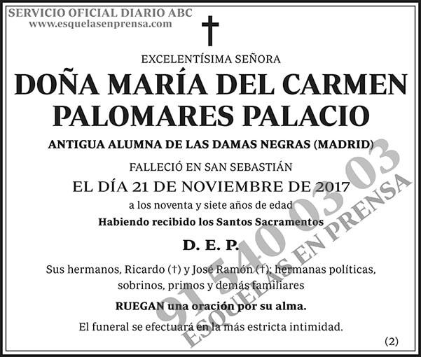 María del Carmen Palomares Palacio